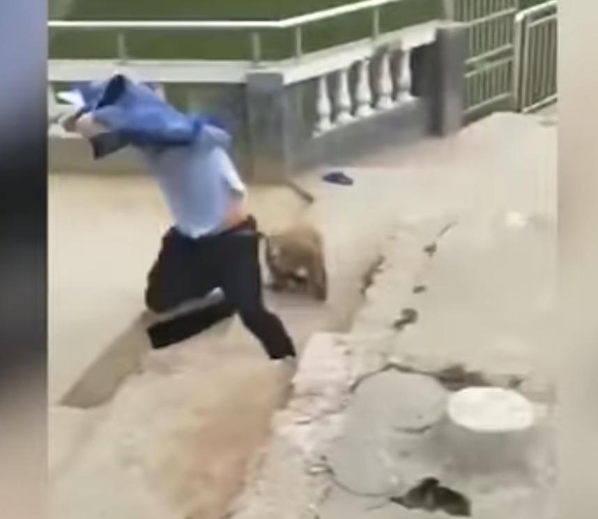 nangtime.com - Ketawa Lepas Sengaja Tolak Monyet Ke Dalam Kolam, Pelancong Lelaki Ini Mendapat Balasan Serta Merta